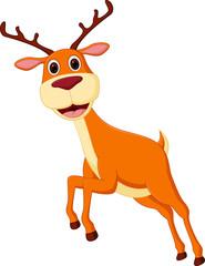 Cute deer cartoon running