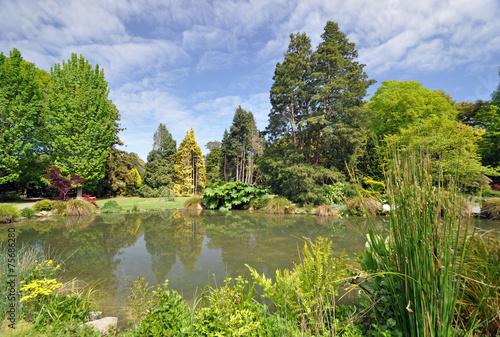 Wellington Botanical Gardens New Zealand - 75686280