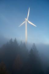 Windrad im Schwarzwald