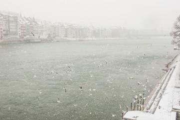 Basel, Altstadt, Basler Rheinufer, Rhein, Winter, Schweiz