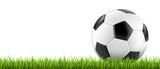 Ballon de football vectoriel 2 - 75695852