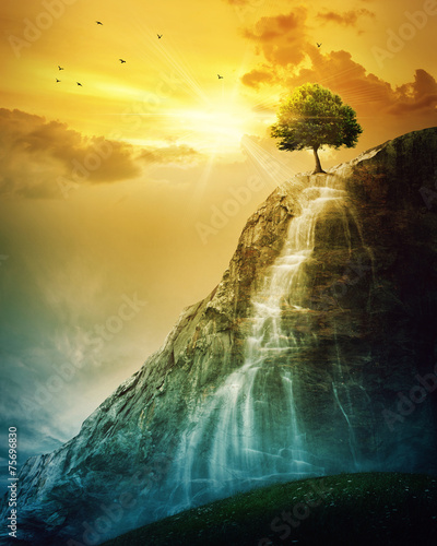 Foto op Aluminium Bergen Waterfall tree