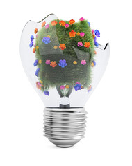 Broken light bulb with grass and flowers