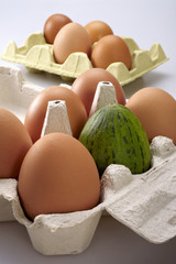 Egg carton, with a melon like one of them