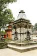 Shrines in Pashupatinath Nepal