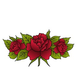 beautiful red roses isolated
