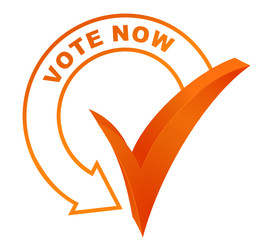 vote now symbol validated orange