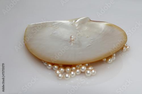 Muschel und Perlen, Perlmutt Schale - 75713079