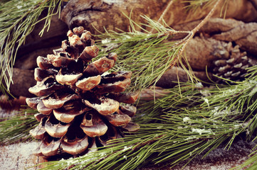 logs and snowy pine tree branches and cones