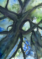 Tree crown watercolor painting with foliage and sky