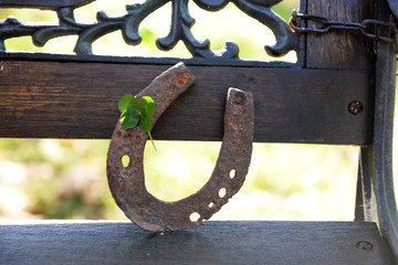 Old horse shoe with clover leaf, outdoors