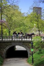 壁紙(ウォールミューラル) - セントラルパークの馬車