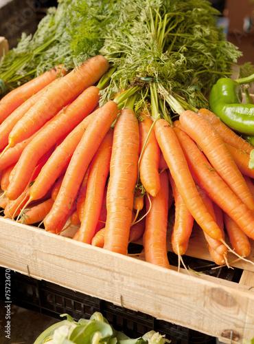 canvas print picture Carrots