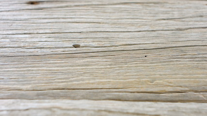 Abstract old wood texture