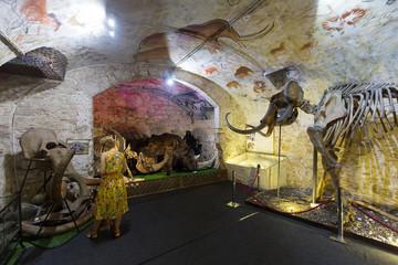 Interior of Barcelona Mammoth Museum