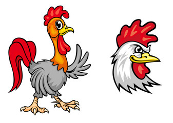 Cartoon colorful roosters