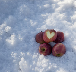 few apples on the snow