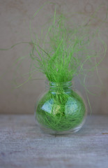 glass cone with artificial grass