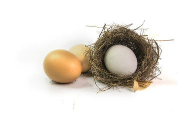 nest and white and red eggs isolated