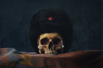 Skull with russian Uschanka and Flag
