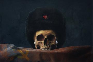 Skull with russian Uschanka and Flag