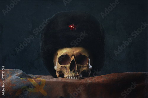 Skull with russian Uschanka and Flag - 75733083