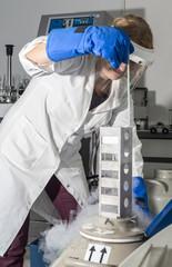 Wissenschaftler entnimmt Proben aus Tank mit Flüssigstickstoff