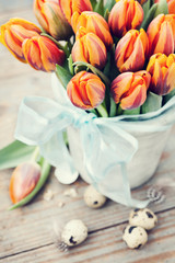 Easter concept, orange tulips and quail eggs in nest