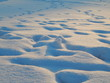 canvas print picture - Spuren im Schnee