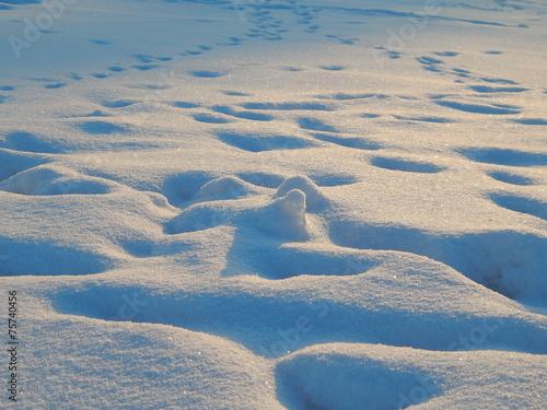 canvas print picture Spuren im Schnee