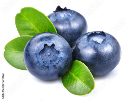 blueberries © atoss