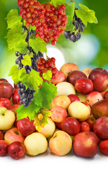 apples and grapes on a green background