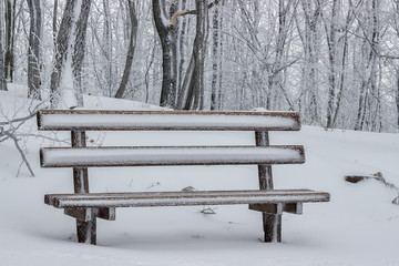 snow covered wooden sitting bench in park 4