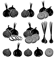 Onion set. Vector