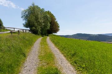 Wanderweg in Schmallenberg, Sauerland, Deutschland