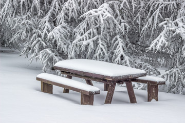 Snow covered picnic bench set with table 2