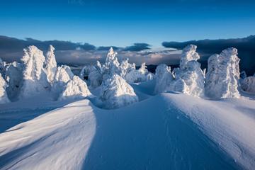 Snow sculpture.