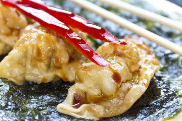 Fried Chinese Dumplings