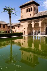 Alhambra, Spagna, palazzo con piscina e albero di palma
