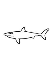 Shark fish evil