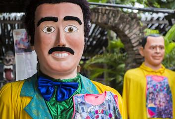 Brazilian Carnival Festival Costumes