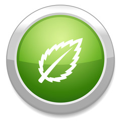 Leaf sign icon. Fresh natural product button.