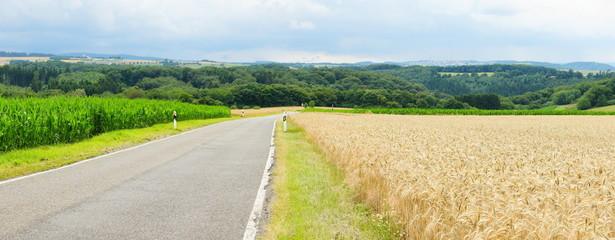 Landstrasse zwischen Feldern