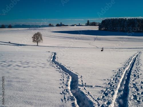 canvas print picture Winterspaziergang hinterlässt Spuren im Schnee
