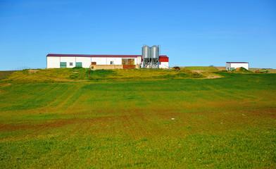 Livestock farm, Extremadura, Spain