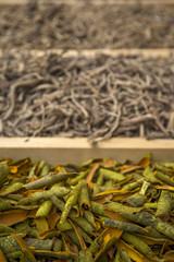 Dry plants on the market