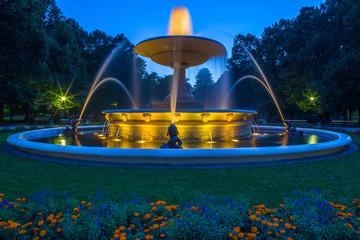 Fountain in Saski Park
