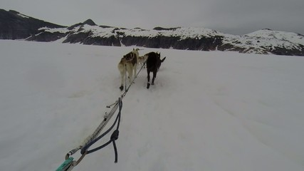 Rear view of sled dogs pulling a sled on glacier