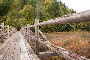 an old wooden foot bridge running over a swampy lake, near Vanco