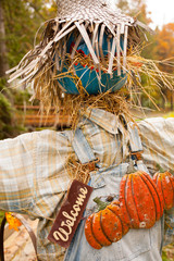 a farm display of a scarecrow, Cowichan Valley, Vancouver Island